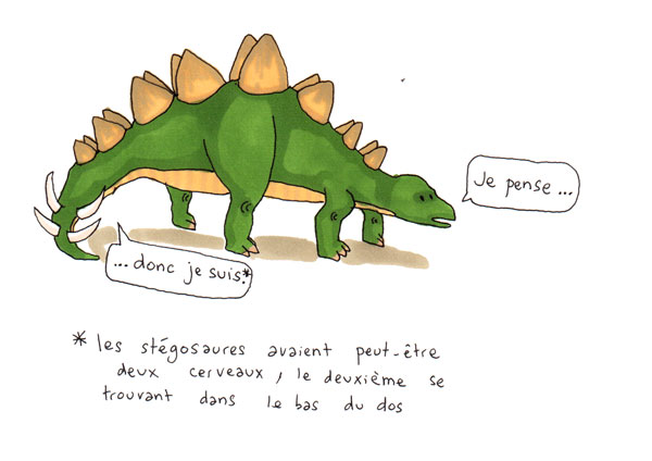 dinosophes1ter