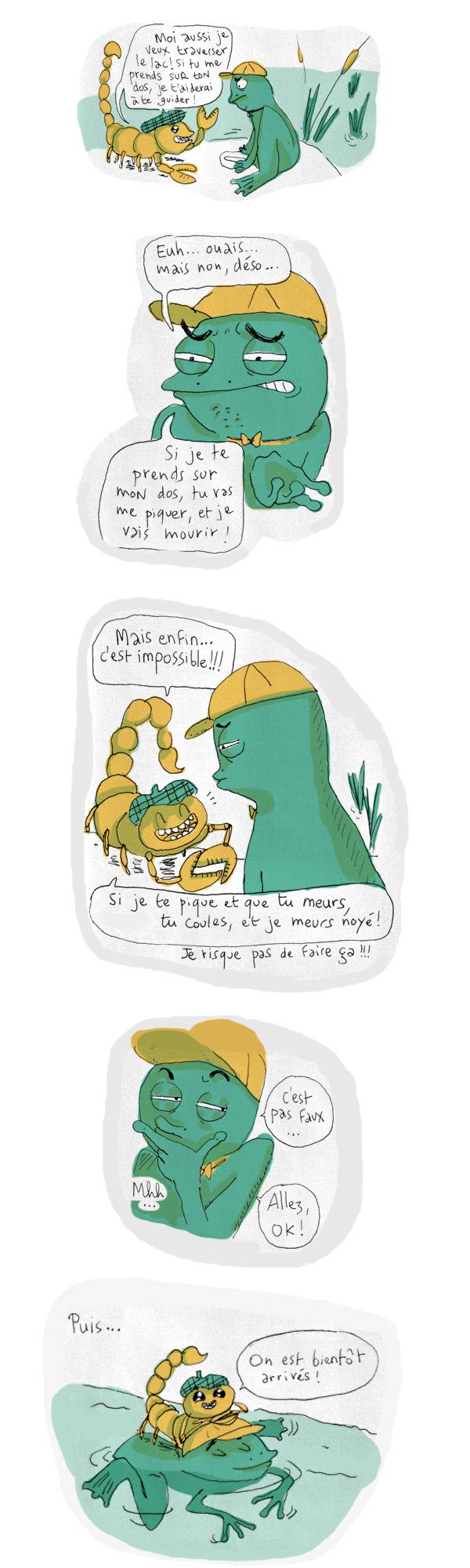 grenouillecolo2